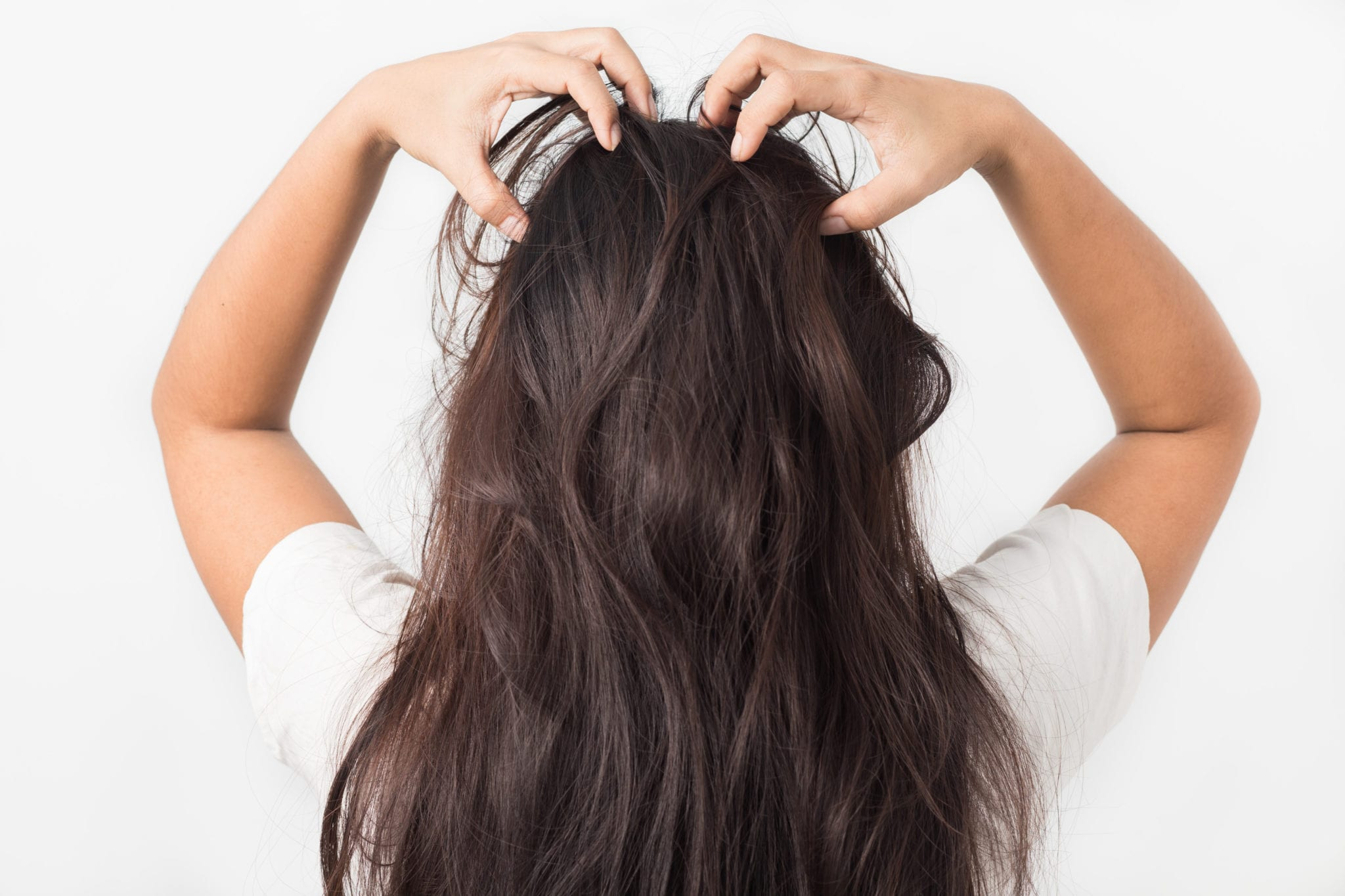 Lice are not dangerous but they can definitely cause discomfort